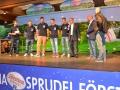 Brunnenfest2013 227