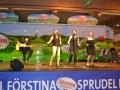 Brunnenfest2013 234