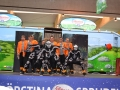 WRBrunnefest2014 (209)