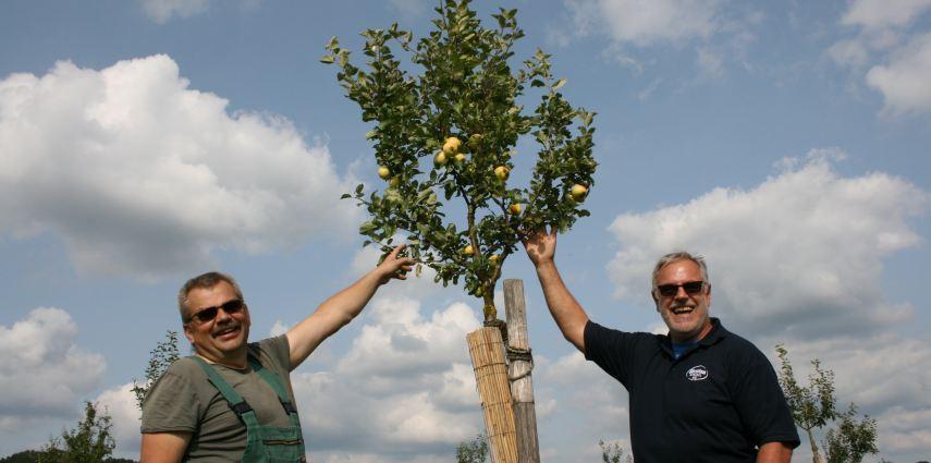 Streuobstexperte Peter Kerner und Förstina-Marketingleiter Peter Seufert freuen sich über einen ersten Apfel-Ertrag.
